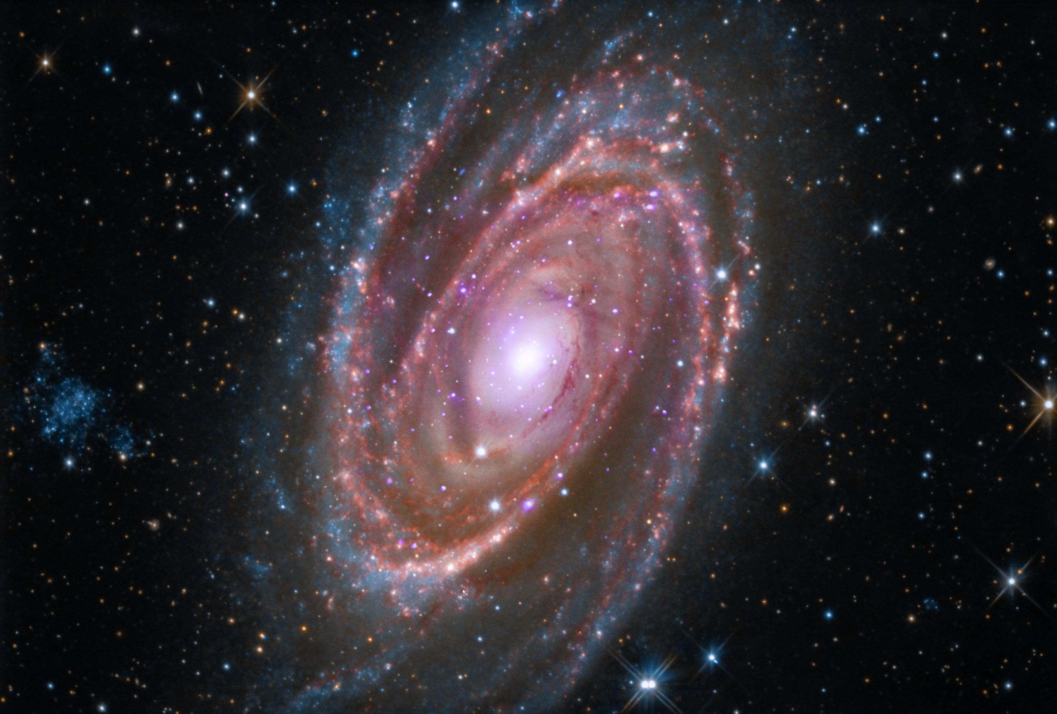 Orion Nebula Hd Wallpaper Spiral Galaxy M81 Nasa