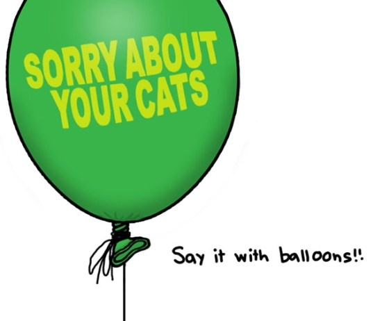 balloons are always tasteful and appropriate My Apologies