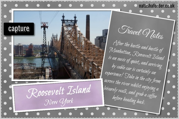 roosevelt island snapshot