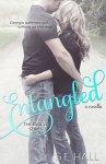 entangled_new