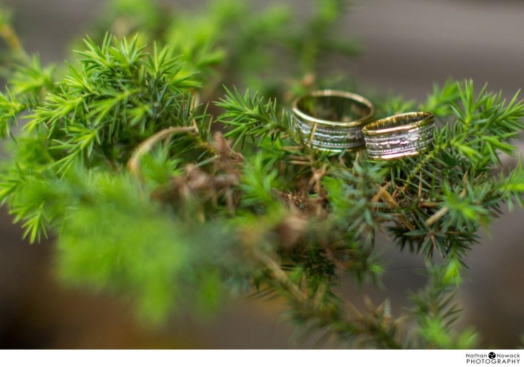 Earl-burns-miller-japanese-garden-wedding-long-beach_0047