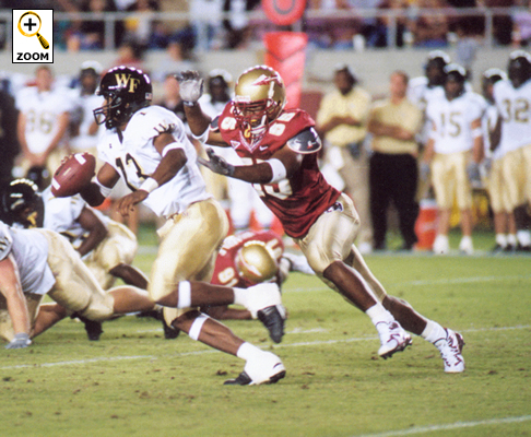 Florida State 2004 Football Preview