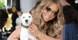 mariah-carey-engagement-dog thumbnail