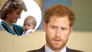 princess diana prince harry mourning