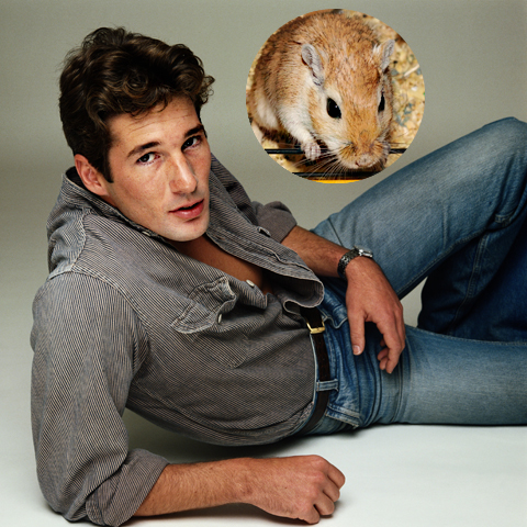 4. Richard Gere loves gerbils
