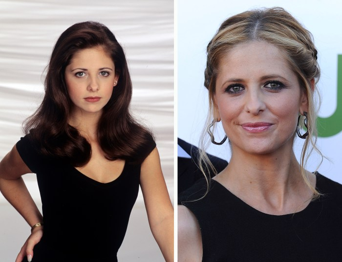Sarah Michelle Gellar, <i>All My Children</i>