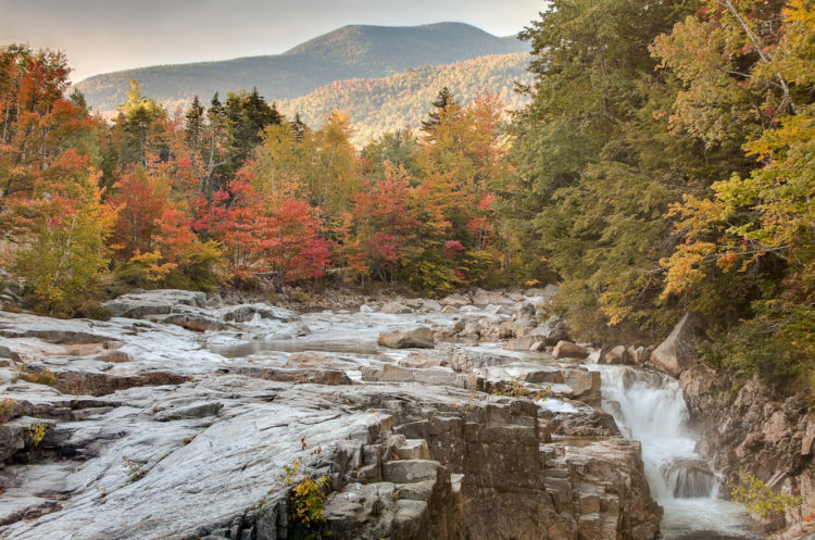 Maine Fall Foliage Wallpaper White Mountain National Forest National Forest Foundation