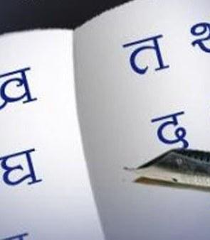 hindi-diwas-b-14-9-2013
