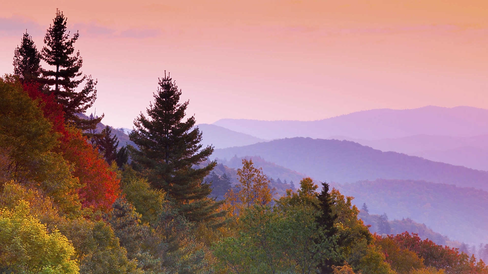 Gatlinburg In The Fall Wallpaper Smoky Mountains National Park Foundation