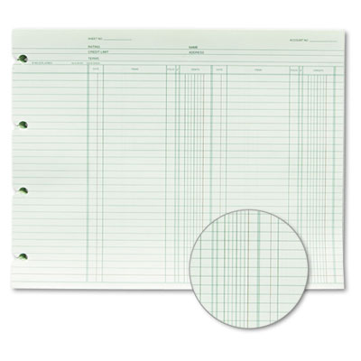 Wilson Jones® Double Entry Ledger Form at Nationwide Industrial