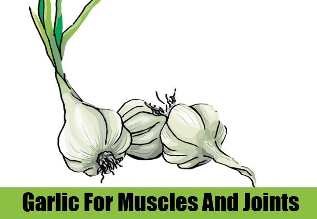 Garlic For Muscles And Joints