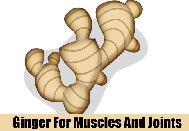 Ginger For Muscles And Joints