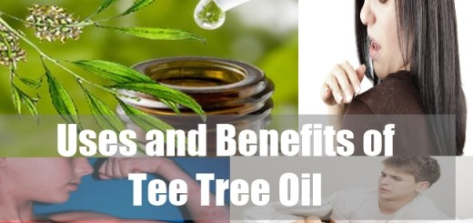 Uses and Benefits of Tee Tree Oil