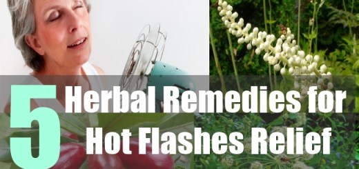 5 Herbal Remedies for Hot Flashes Relief