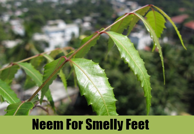 Neem For Smelly Feet