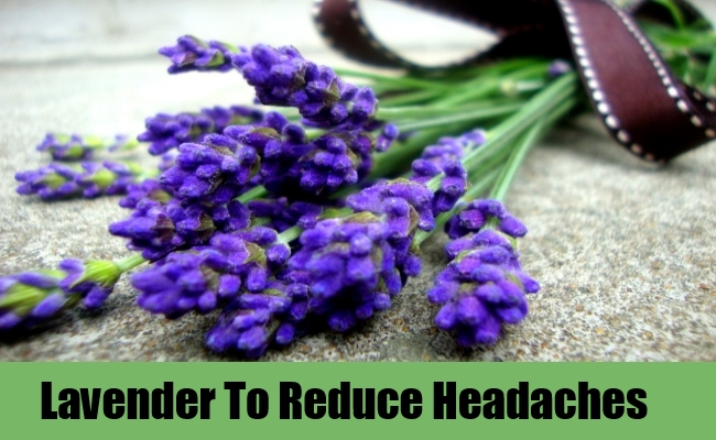 Lavender To Reduce Headaches