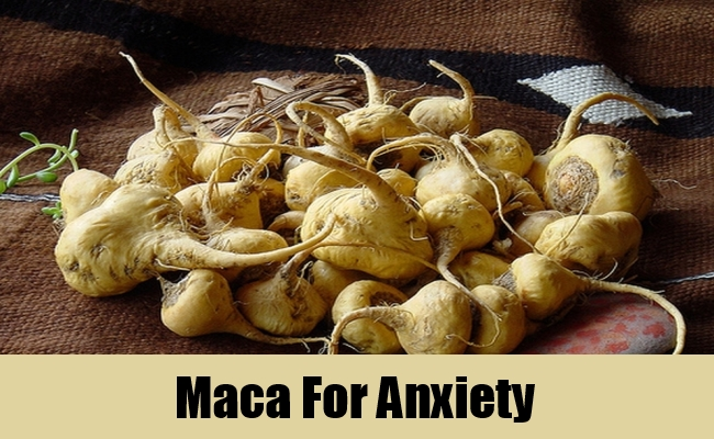 Maca For Anxiety