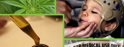 Резултат со слика за DEA Ridiculed: American Epilepsy Society Announce Cannabis Extract Obliterates Epileptic Seizures in Children