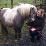 3 Year Old Pony Mare with Owner