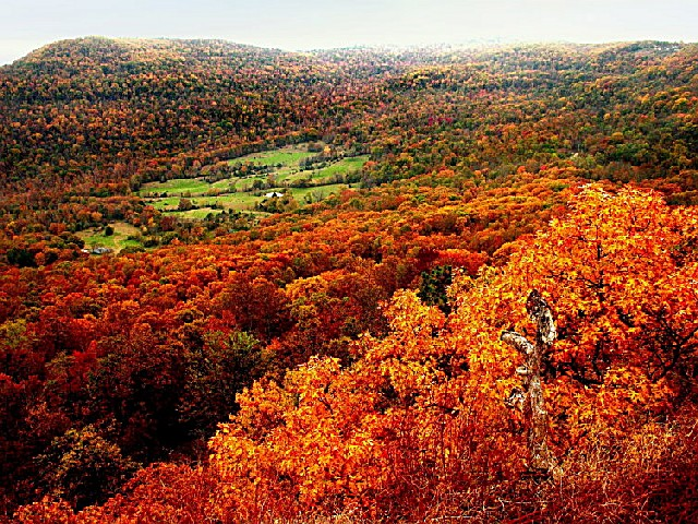 Welcome Fall Wallpaper Ozark National Forest An Arkansas National Forest Located