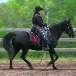 FOSH IJA Western Training 1 canter