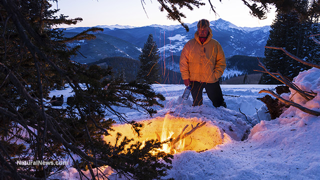 How To Build A Fire In A Winter Survival Situation