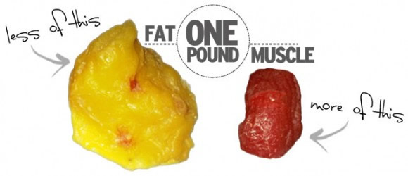fat free-mass-index calculator