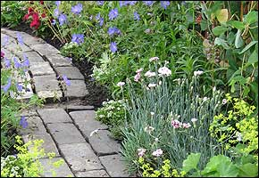 Garden Path and border