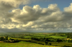 Looking North over the Wytchcombe & Yarnacombe vales of the South Hams region of Devon. Pic Devon Hedge Group / Phil Hemsley