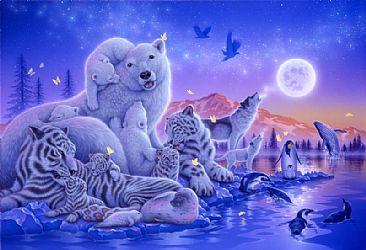 Cute Christmas Owl Desktop Wallpaper Kentaro Nishino Airbrushed Wildlife Art