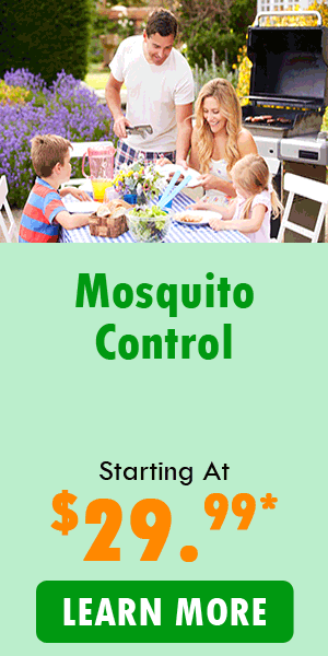 Mosquito-control-starting-at-2499