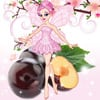 dance-of-the-sugar-plum-fairy1