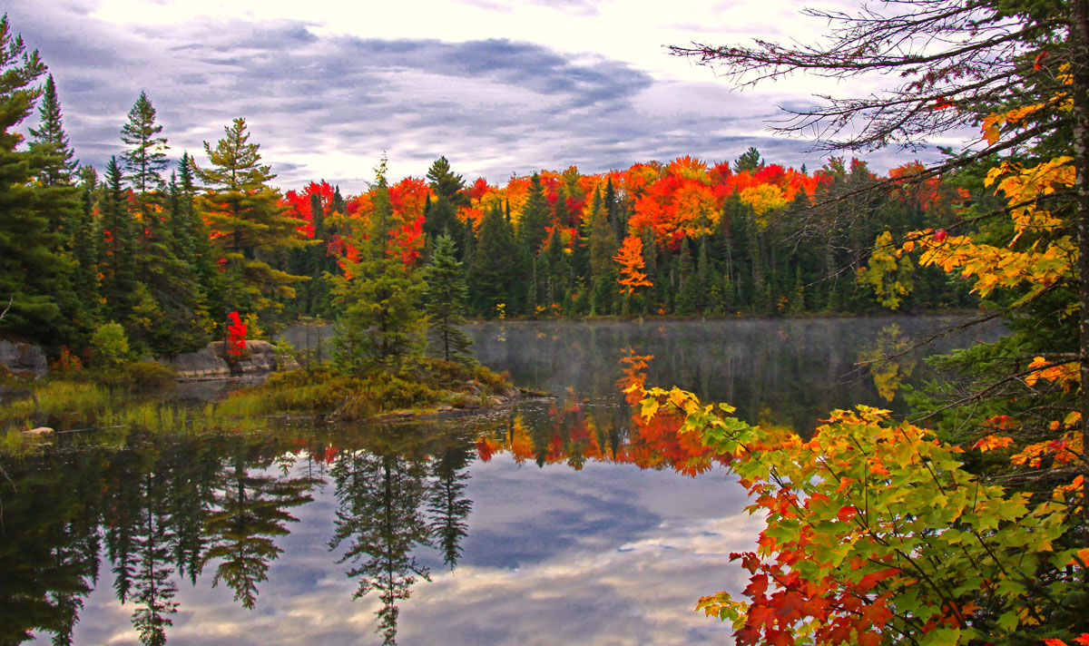 Central Park Fall Desktop Wallpaper Fall Trip Photos Nature Trek Canada