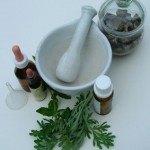 Fitoterapia: Las plantas medicinales a Nuestro Servicio