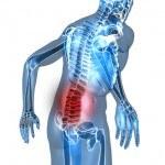 Columna vertebral: Cómo cuidarla y mantenerla sana