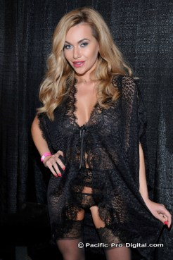 Adultcon Los Angeles #26 at the Los Angeles Convention Center in Los Angeles California on May 14, 2106