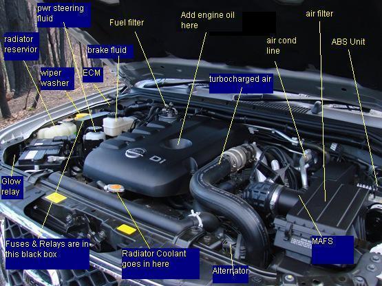 Nissan Navara Ute Wiring Diagram Wiring Diagram