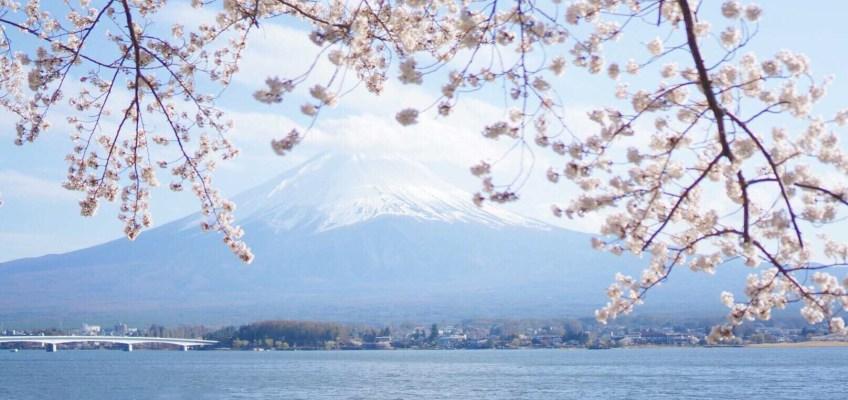 気になる日本のメディア企業の動き