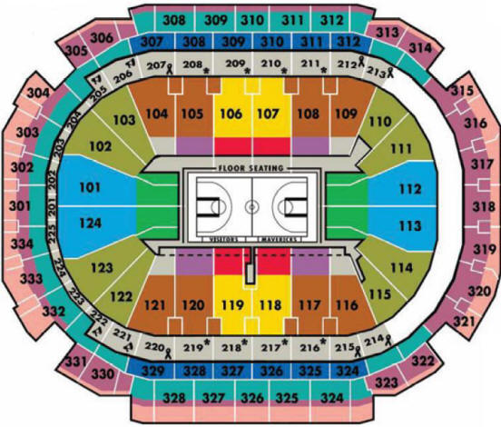 NBA Basketball Arenas - Dallas Mavericks Home Arena - American