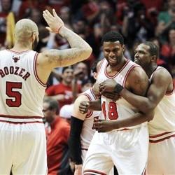 Bulls Nets 2013