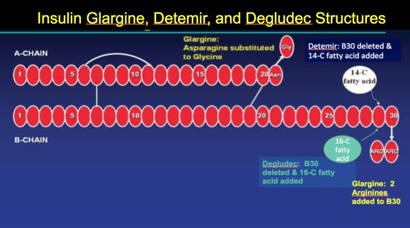 Insulin \u2013 Pharmacology, Therapeutic Regimens, and Principles of