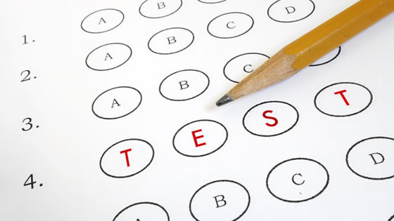 School and Education Standards and Assessments