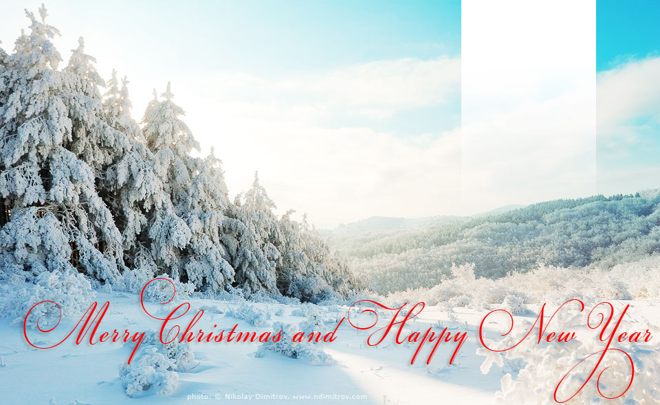 Free Christmas and New Year card template for web and e-mail - free xmas card template