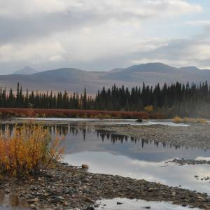 alaska-scenery