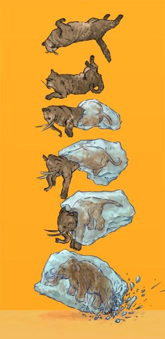 cover illustration for Motorboats CD