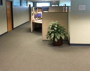 Commercial Carpet Installation Carpet Tile Stone