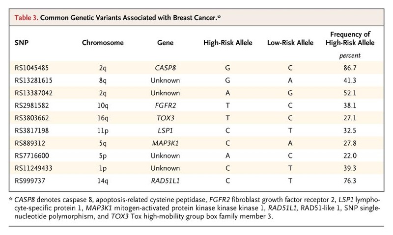 Performance Of Common Genetic Variants In Breast Cancer