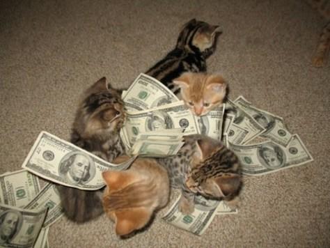 crime_cat07