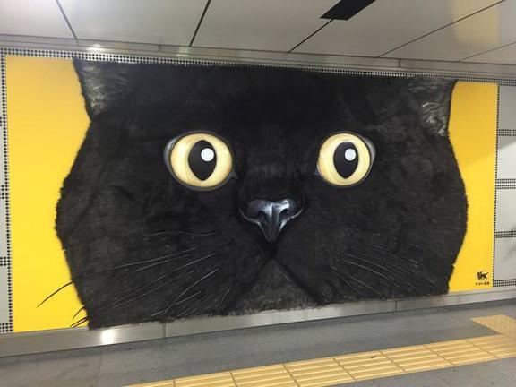【猫広告】渋谷駅に巨大黒猫!?TWITTERで話題の突然現れた巨大黒猫広告とは・・・!?