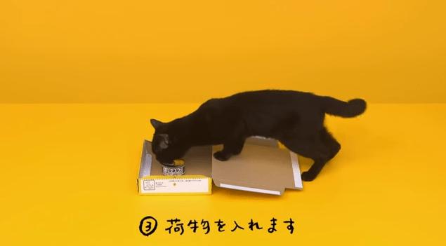 【猫CM】この黒猫、器用過ぎる!!クロネコが紹介する宅配便ボックスの組み立て方とは・・・!?-宅急便コンパクト-